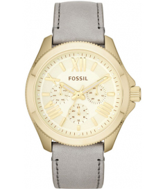 AM4529 Fossil